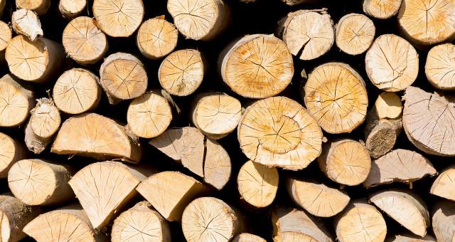 Træ og papir