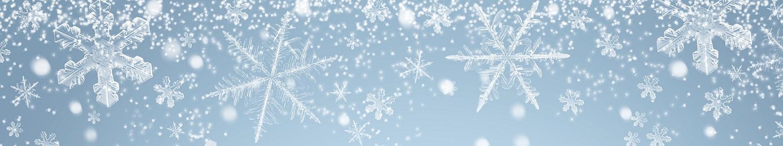 Wir wünschen eine schöne Weihnachtszeit!